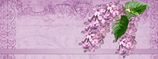 Lavender Spring Facebook Timeline
